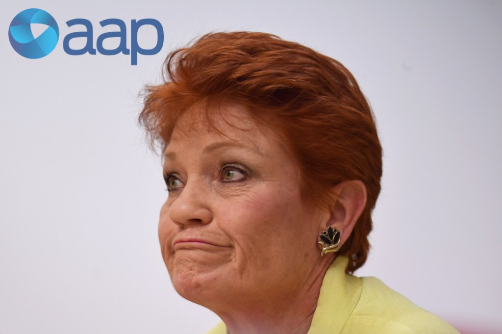 One Nation Senator Pauline Hanson reacts...