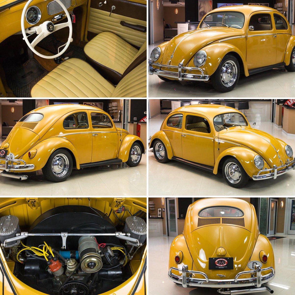 VW Bug & Bus (@VWBugAndBus) | Twitter