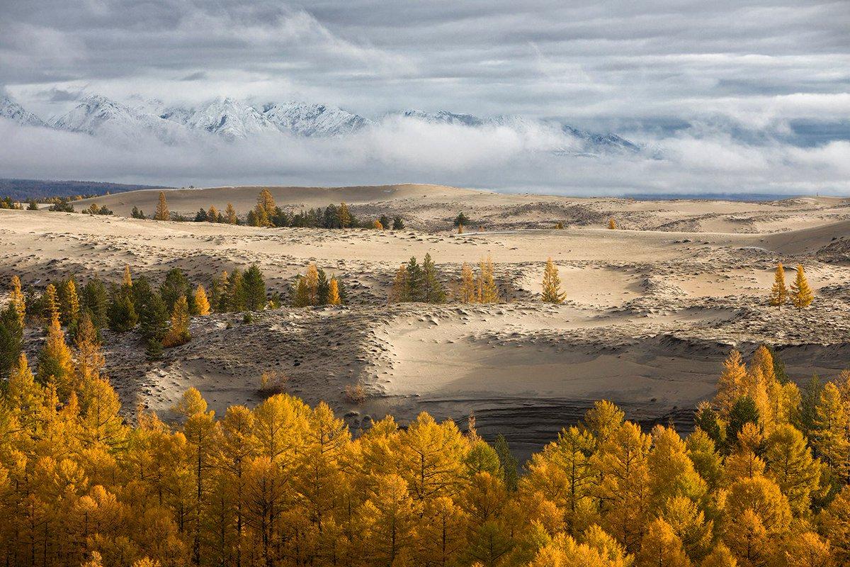 Сибирь. Чарские пески. © Андрей Ершов https://t.co/jIcmm5BaAA
