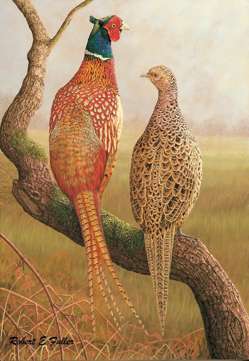 pheasants hashtag on twitter