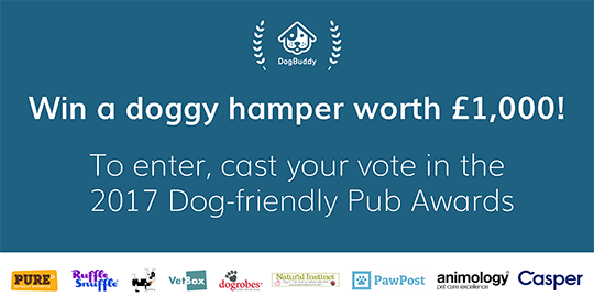 Hurry!Voting in the Dog-friendly Pub Awards closes on Sunday.It's your last chance to vote & get your paws on prizes:https://t.co/gKf0j2Wtx8 https://t.co/PIjuPlW6Qv