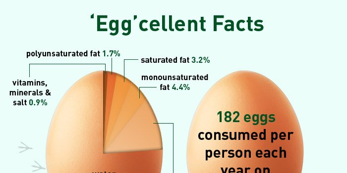 RT Antioxidant Properties of Eggs Could Help Prevent Heart Disease ➡ https://t.co/TmlRoJbNGw https://t.co/Pt0U1j1LAd #health #wellness