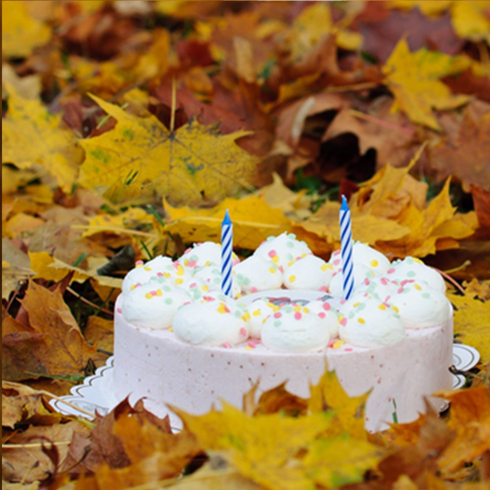 Днем, открытки с днем рождения октябрь