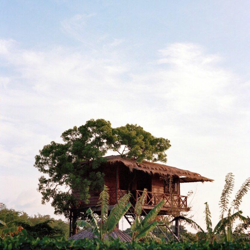 Airbnb On Twitter An Unbeatable View Of Sigiriya Rock From
