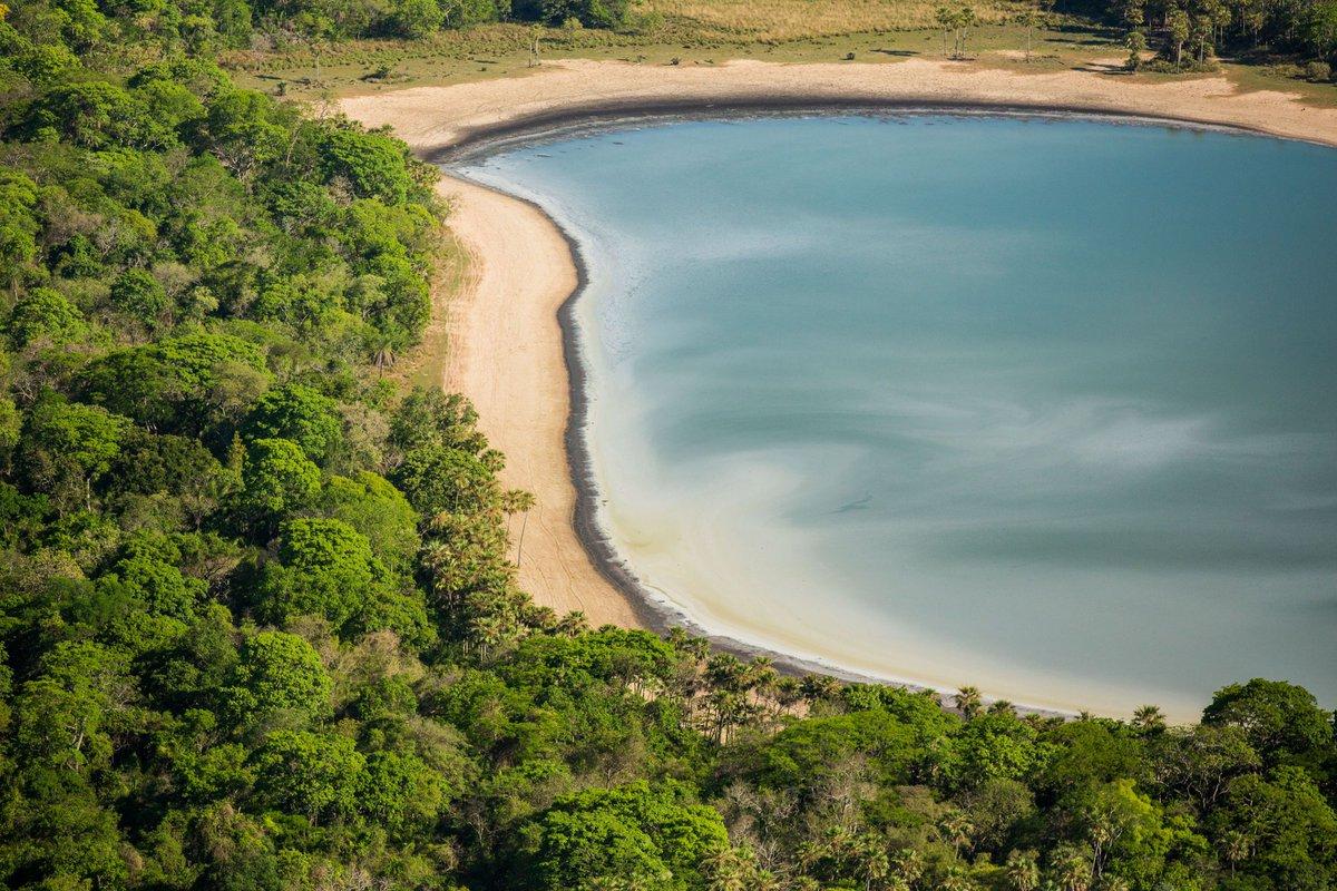 Toda a exuberância do Pantanal em uma matéria linda no nosso portal. https://t.co/IDLPQbsaFj