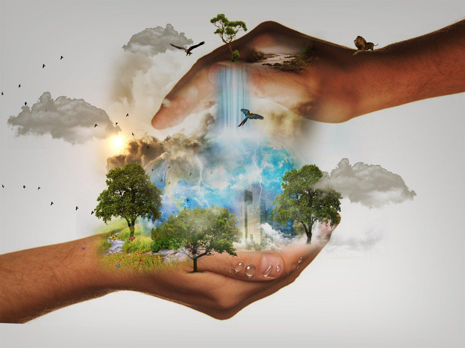 Картинки о экологии природы и мы