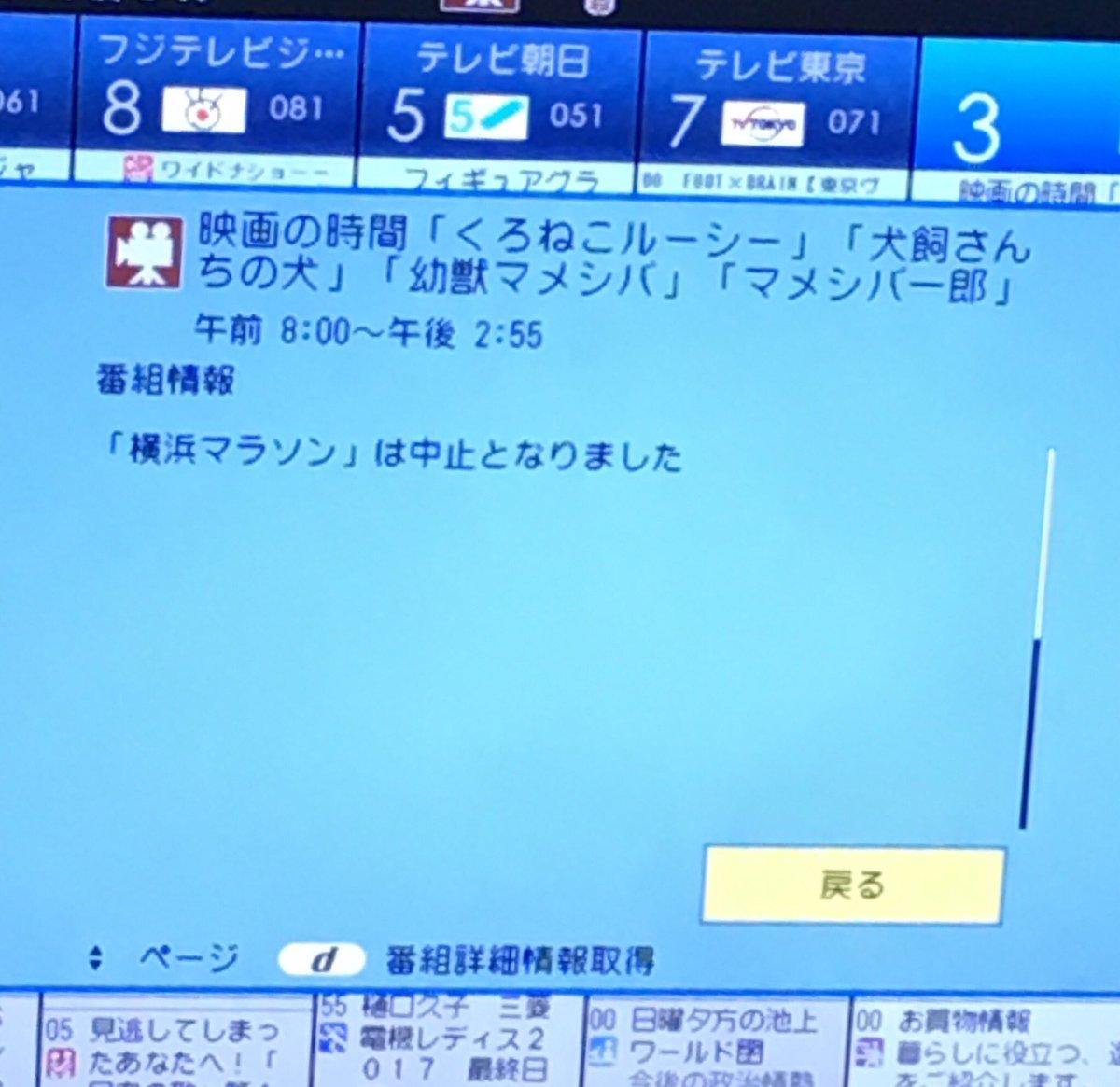 横浜マラソンが台風で中止になったからと、7時間近い枠を犬と猫だけでもたせるテレビ神奈川好き