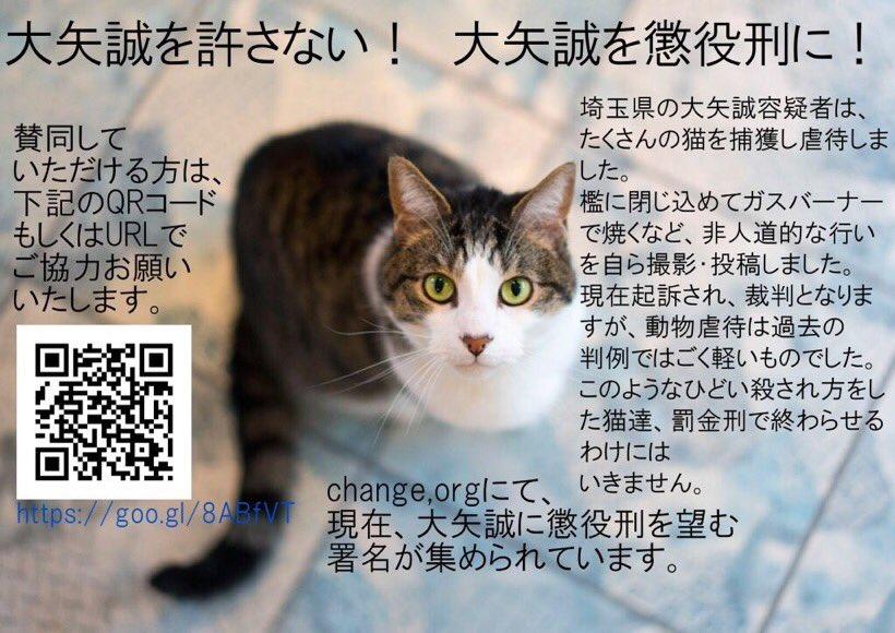 """猫族 オルテ on Twitter: """"#大矢..."""