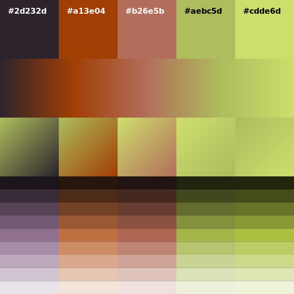 download microsoft visual web developer