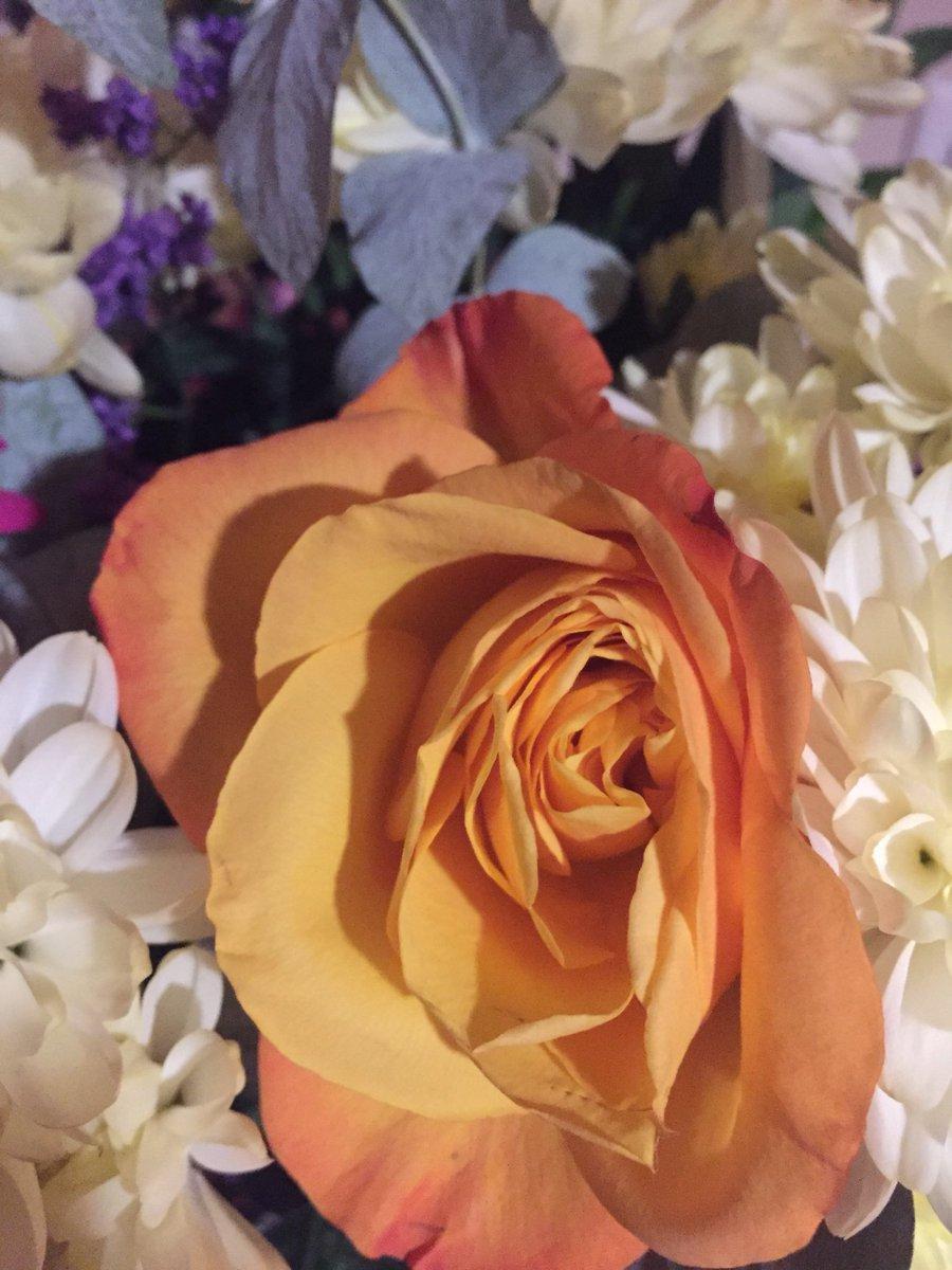 Gwendoline christie on twitter dear roseoftarth thank you so gwendoline christie on twitter dear roseoftarth thank you so much for my lovely birthday flowers so sweet of you izmirmasajfo