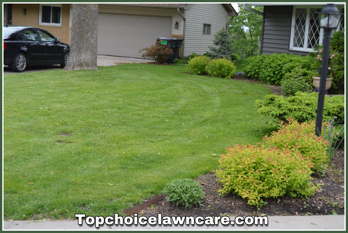 top choice lawn care topchoice mn twitter