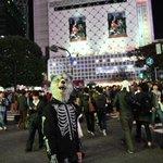 渋谷デ迷子(「゚Д゚)「ガウガウ #MWAMハロウィン#FINDカミカゼ pic.twitter…