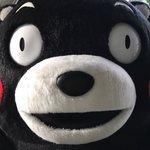 おはくま〜!今日も1日よろしくま☆ pic.twitter.com/RAAZM31Atm