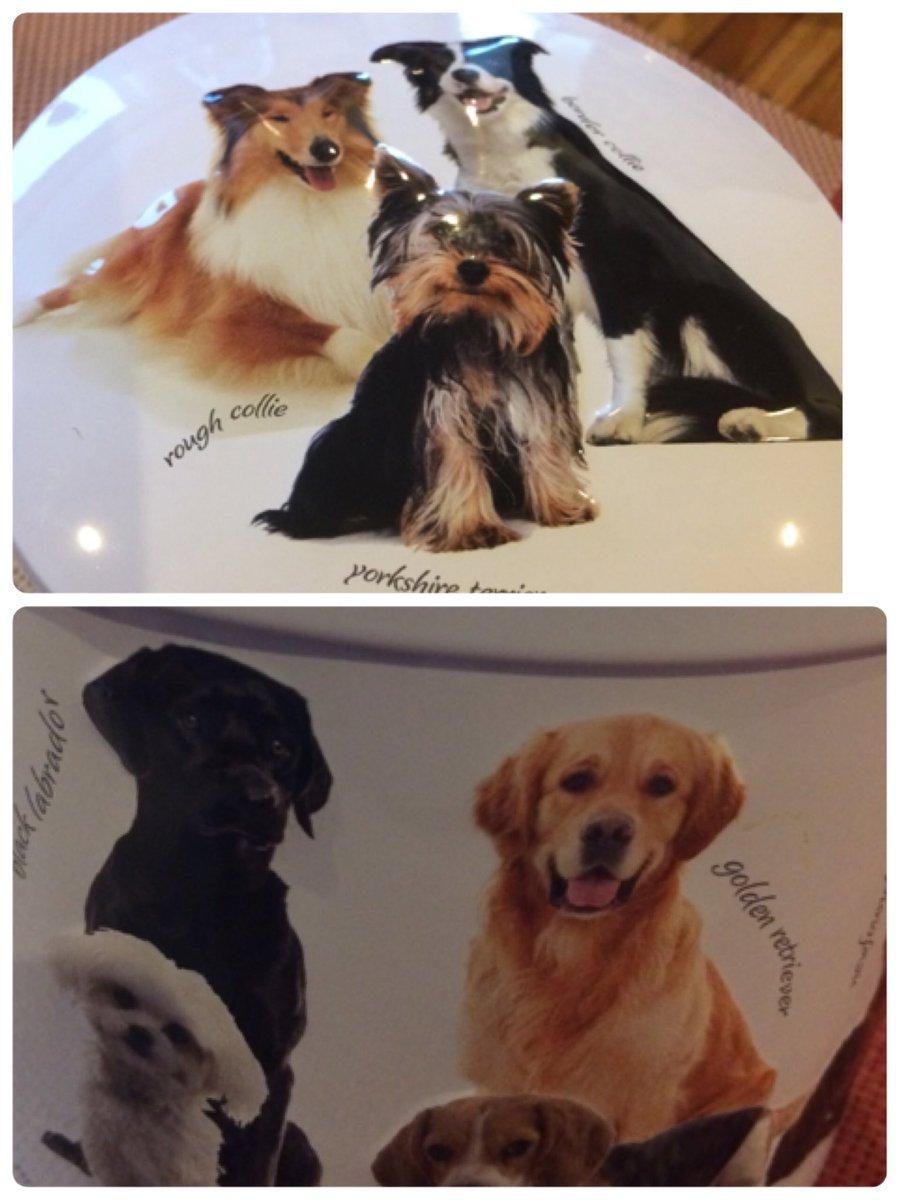 カルディの「犬の日」商品が可愛い♡11月1日はワンワンワンでいぬの日!わんこ缶に肉球グミも♡まとめのカテゴリ一覧Joceeについて関連サイト一覧