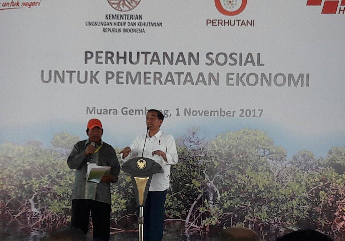 Presiden Jokowi Tinjau Perhutanan Sosial Untuk Pemerataan Ekonomi Di Muara Gembong