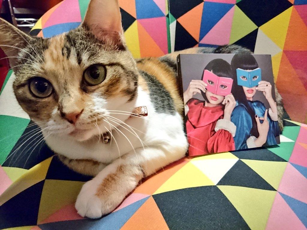 チャラン・ポ・ランタン 「ミラージュ・コラージュ」  本日発売だよ!!  めちゃいいアルバムになったと思う。2人の今が詰まってる。わたしも想いを込めてレコーディングしました。  聴いてね(っˆヮˆ)っ