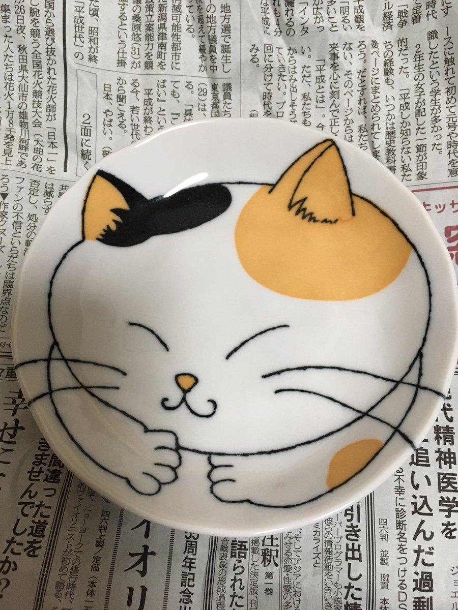 test ツイッターメディア - ダイソーのお皿かわいい #ダイソー #猫 #お皿 https://t.co/SViUYFtasG