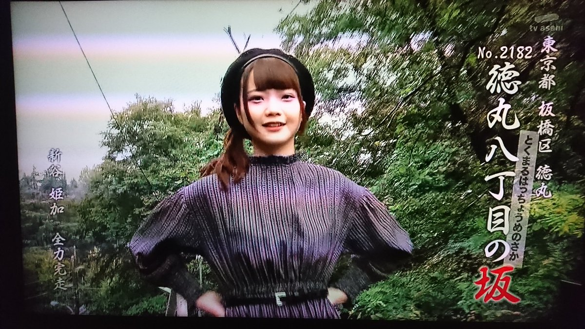 「新谷姫加 全力坂出演」の画像検索結果