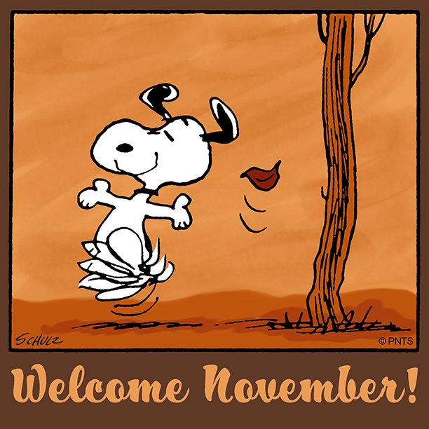 Image result for snoopy november