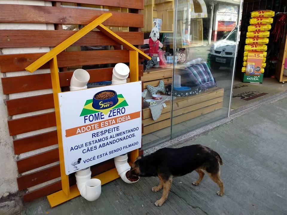 Comerciante cria restaurante popular para cães de rua em MG https://t.co/M9eJo6WPNQ #G1