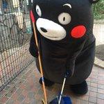 おはくま〜!まずはお掃除がんばるモン☆ pic.twitter.com/nEf0Fp3Eoo