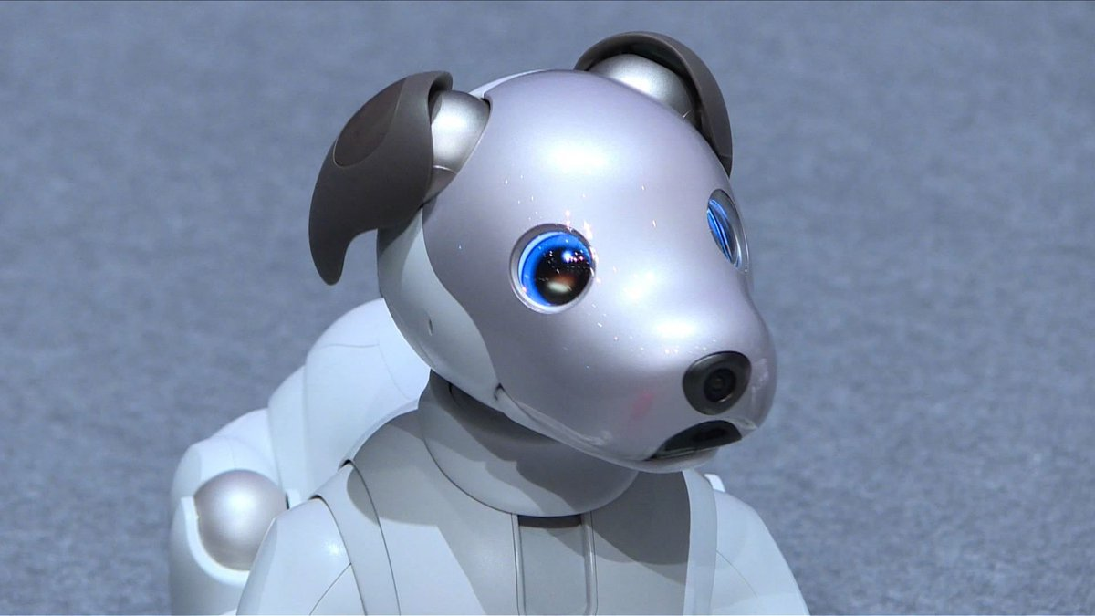 Sony Brings Back Updated AIBO Robot Dog | Baaz