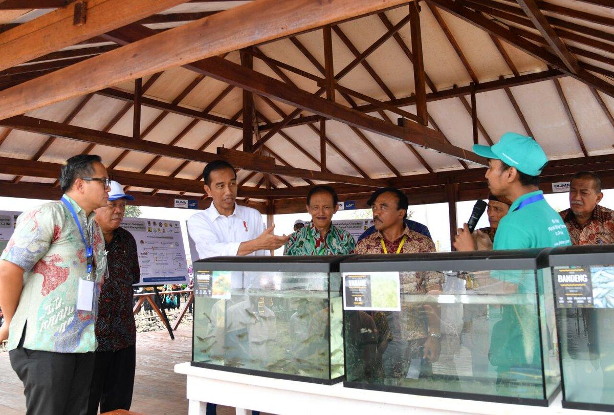 Rehabilitasi Tambak Ikan & Udang Muara Gembong Bekasi , Program Perhutanan Sosial
