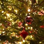 【取材】恵比寿ガーデンプレイス、バカラの世界最大級シャンデリアが輝くクリスマス fashion-pr…