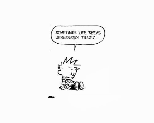 """Calvin and Hobbes on Twitter: """"At least tomorrow's Friday.…"""