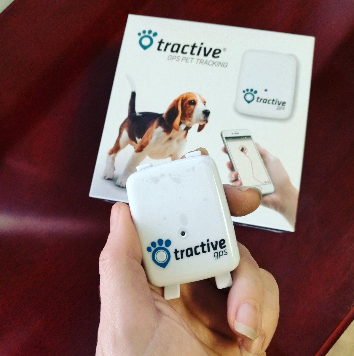 My @Tractive Internet of dogs has arrived and I'm totally geeking out about this! 😆🎉 #Tech #Technology #IoT https://t.co/qVHQ9mwXvG