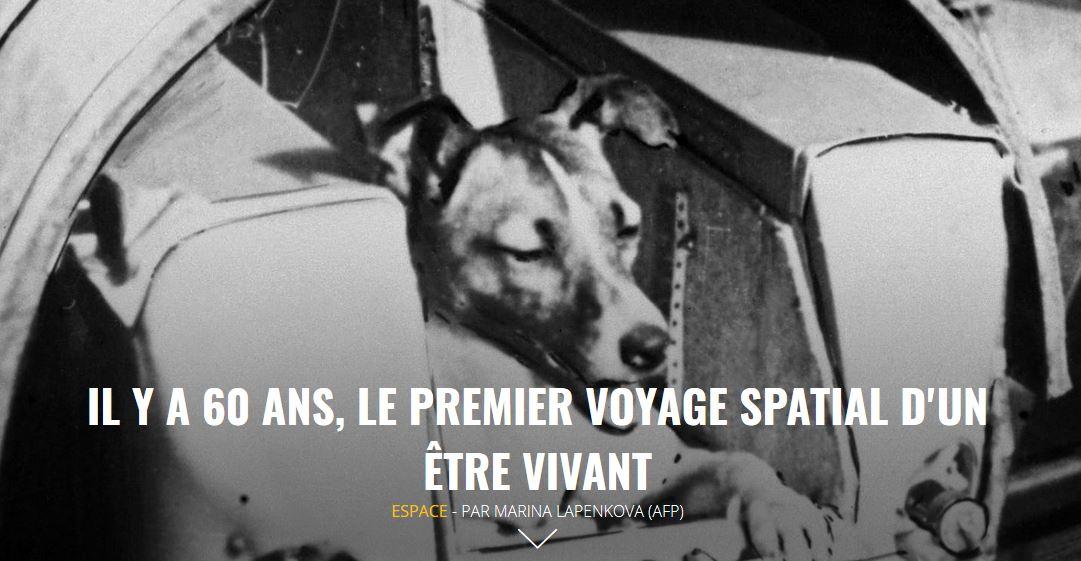 [Edition du soir] Il y a 60 ans, le premier voyage spatial dun être vivant >> soir.sudouest.fr/2017-11-02/391…