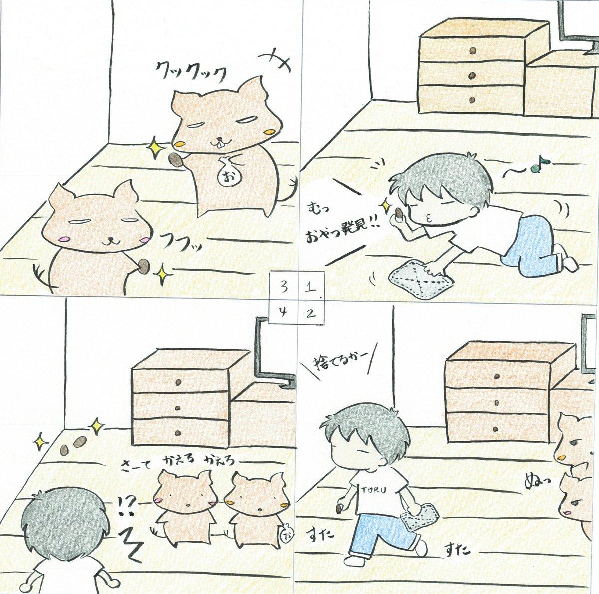"toru@デグーと暮らしてます on twitter: ""いくら掃除しても部屋の"