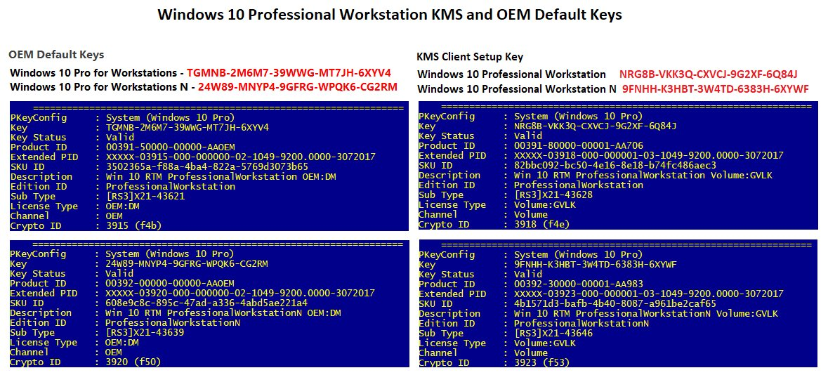 windows 10 professional oem key and download