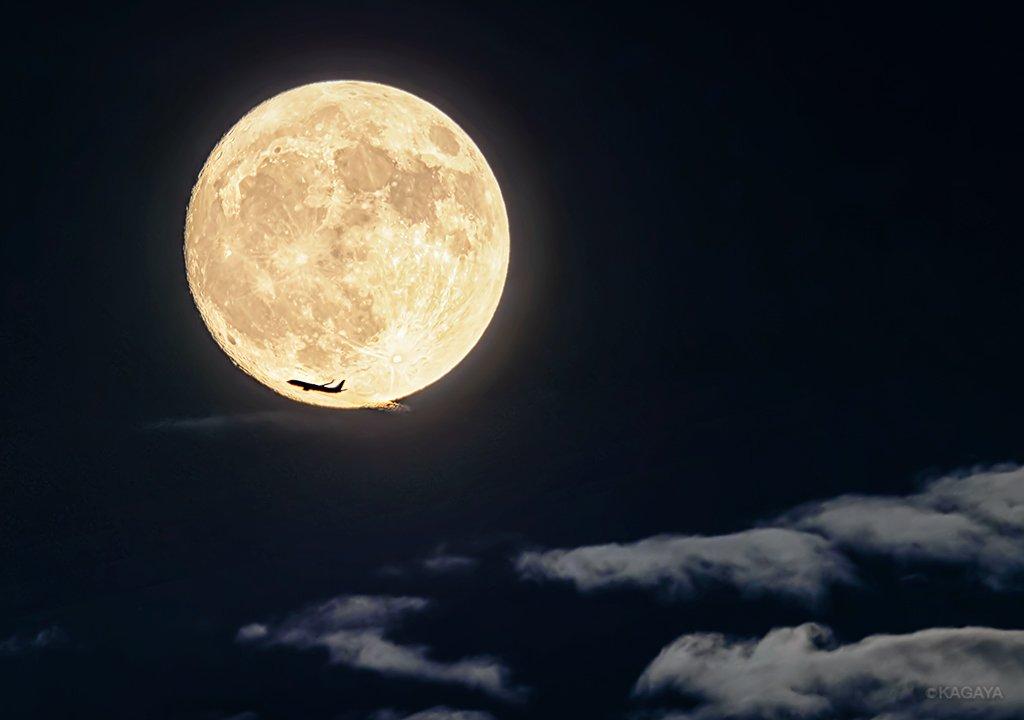 東の空をご覧ください。見事な十五夜の月が昇りました(満月は明日です)。 写真は先ほど東京で撮影したもので、偶然月の前を飛行機が横切りました。 今週もお疲れさまでした。おだやかな週末になりますように。