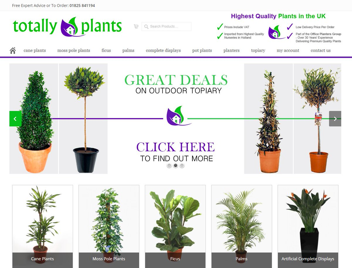 ... your home, office or terrace? Our pals at Totally Plants have lots to  choose from ...