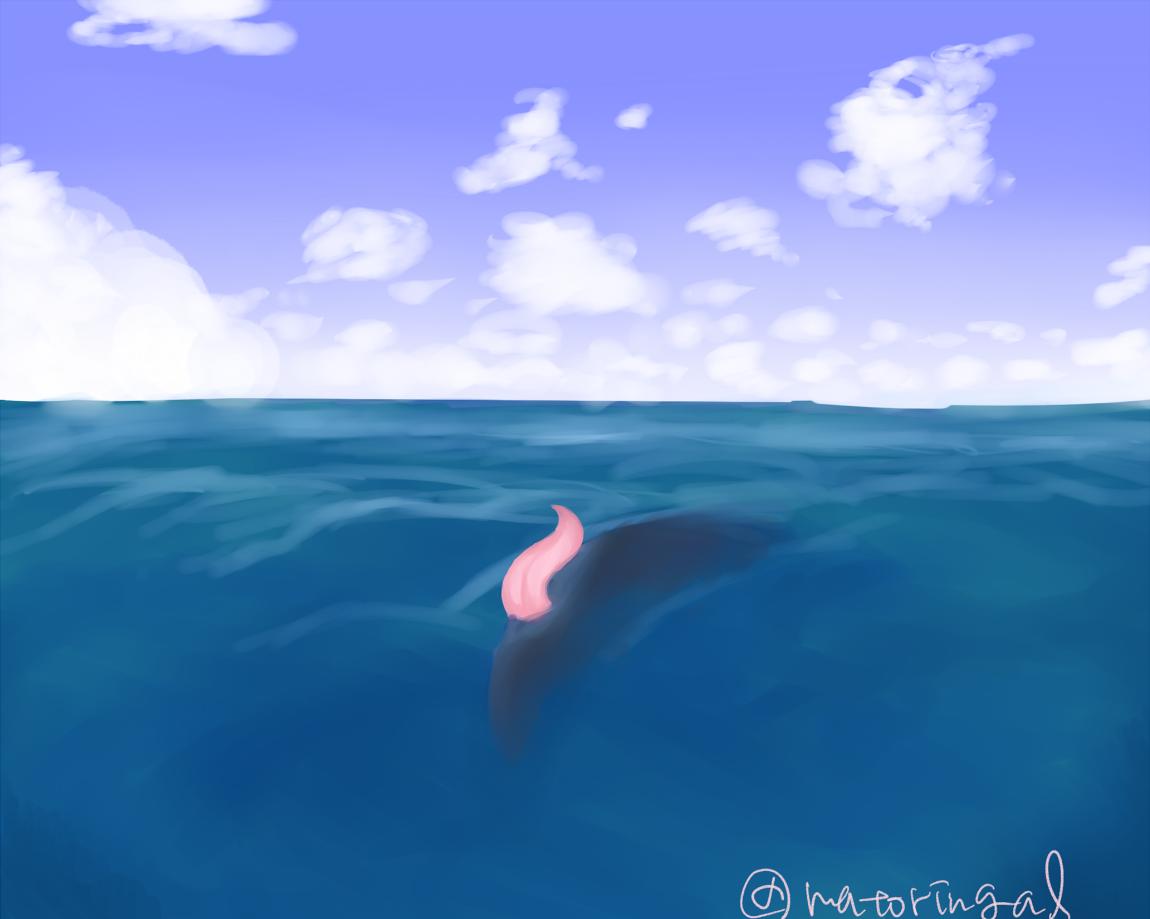 イルカ ペニス