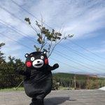 おはくま!今日も1日がんばるモーン☆ pic.twitter.com/yNRPwTGcK7