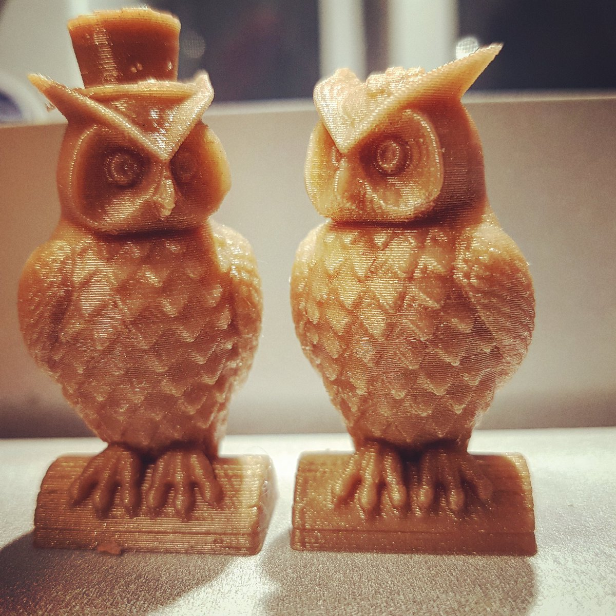 anycubic owl