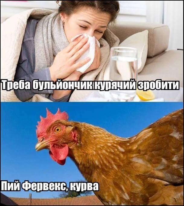 Эпидемии гриппа в Украине в данный момент нет, - Минздрав - Цензор.НЕТ 1777