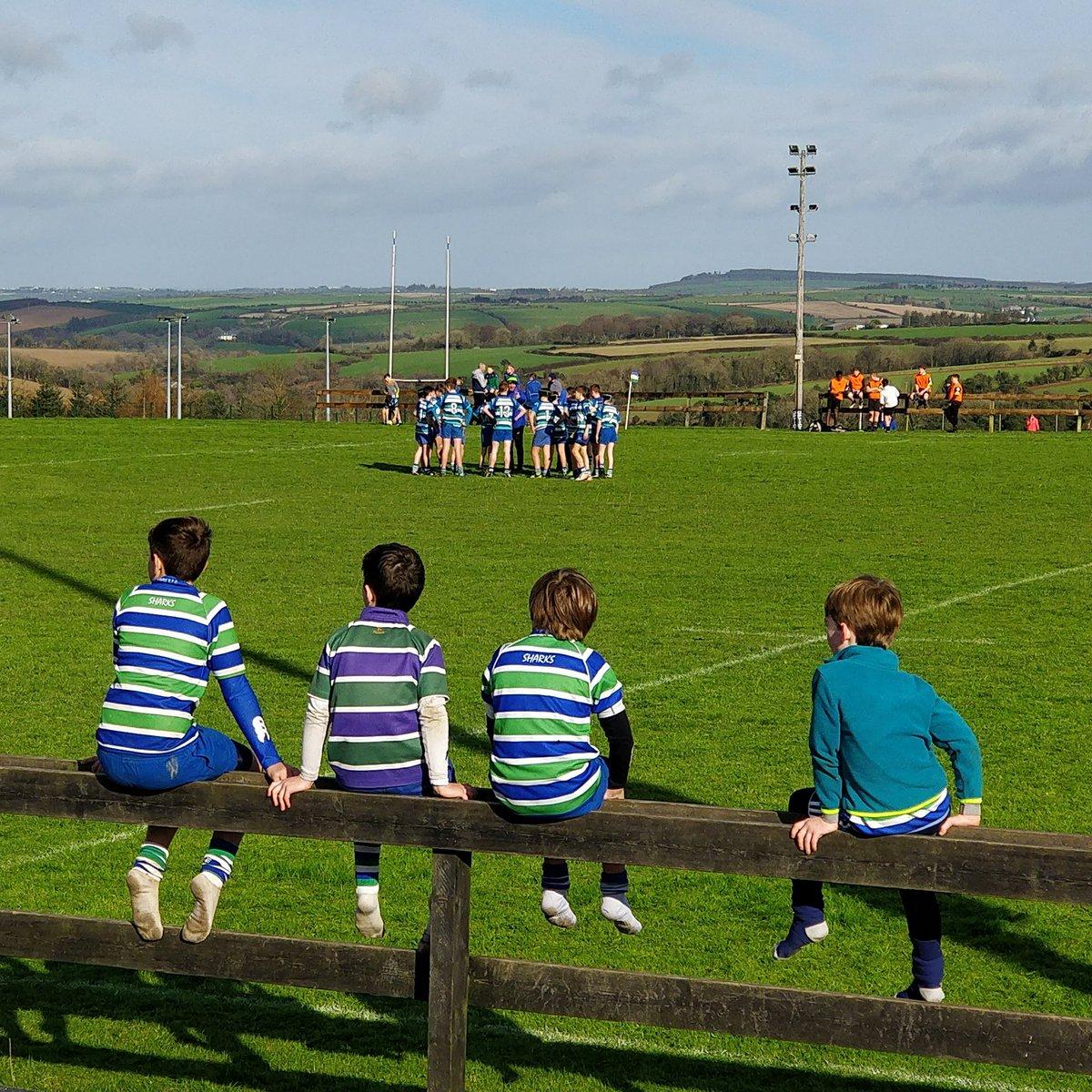 How it all begins.. u10s watching u14s at @KinsaleRFC1 #JuniorRugby #ComeOnSharks<br>http://pic.twitter.com/508ydCSqNl