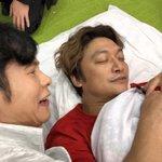 ごろさんが、添い寝!#ユーチューバー草彅 #ホンネテレビ pic.twitter.com/kjTZ1…
