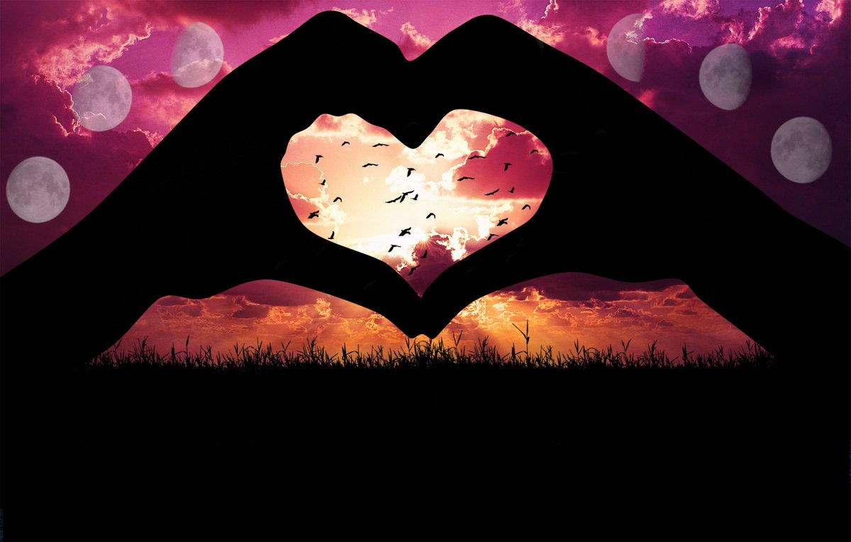 Hd Wallpapers On Twitter Image By Kristen Android Https T Co Mhtuzcfkvq Iphone Https T Co Axdxhm2psc Heart Hands Love Birds Wallpapers Hdwallpapers Https T Co Fhrr0ovft8