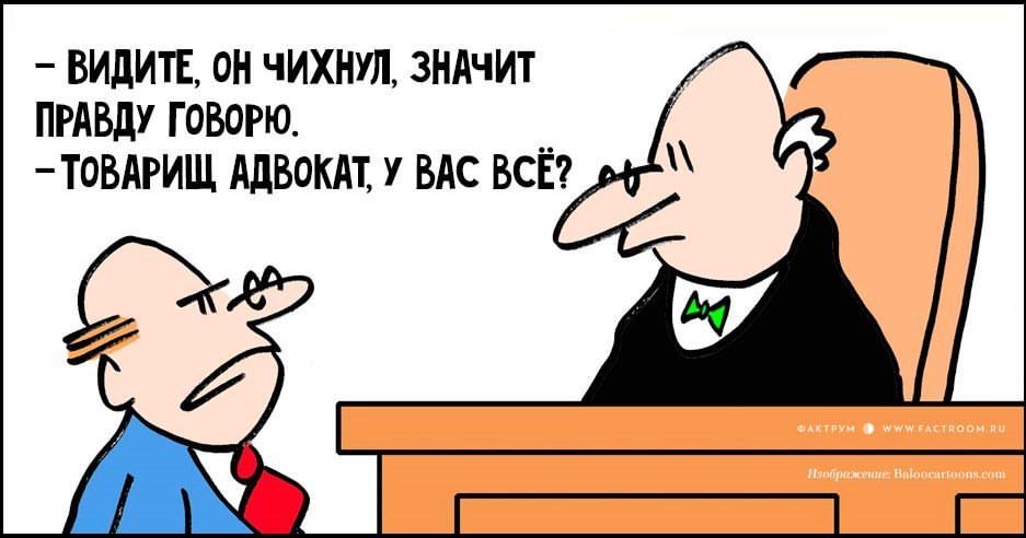 Смешные картинки, смешные картинки с адвокатом