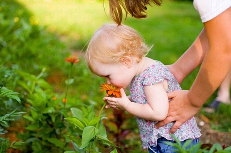 """""""Nella #vita bisogna fare tre cose: fare un #figlio, scrivere un libro, piantare un #albero."""" - Proverbio Zen https://t.co/kYilWP38b3"""