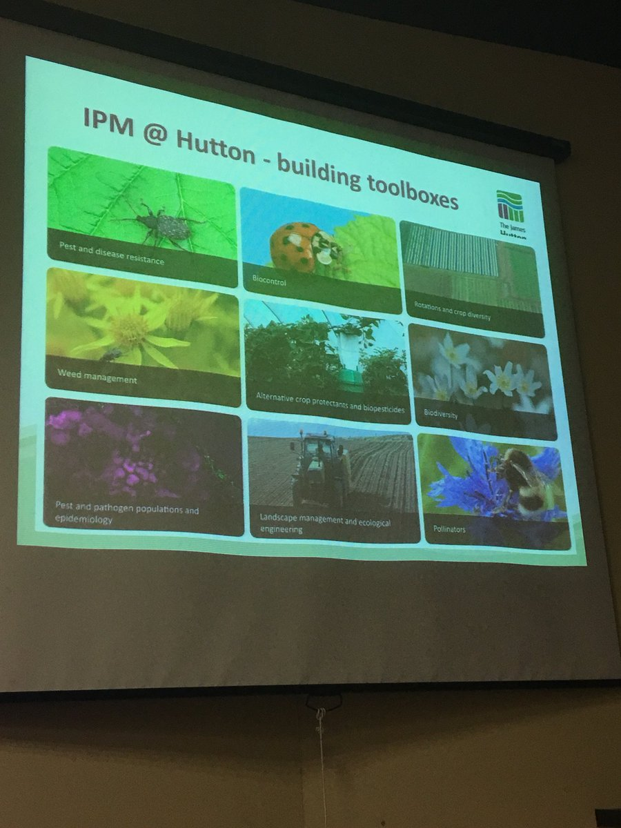 Prof Nick Birch @JamesHuttonInst discusses building integrated pest management #ipm toolboxes for agriculture @SRUC student crop protection conference<br>http://pic.twitter.com/uUcHZ9kit0