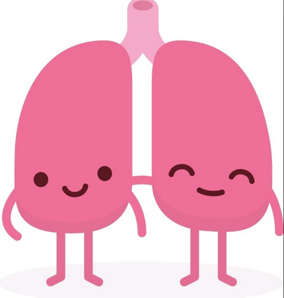 #DYK that your lungs are important for talking &amp; singing? November is lung month so let's celebrate these amazing organs &amp; sing out loud! <br>http://pic.twitter.com/YP2cjVCxSe