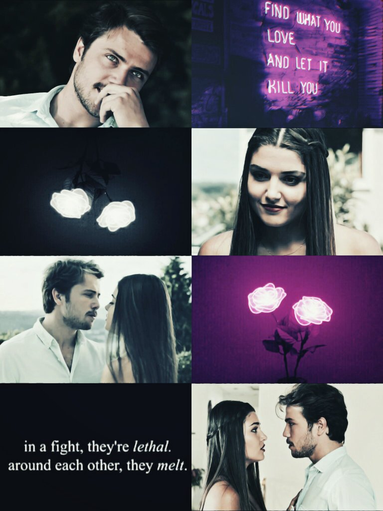 Those two... In a fight, theyre lethal. Around each other, they melt. #AlSel | 13.