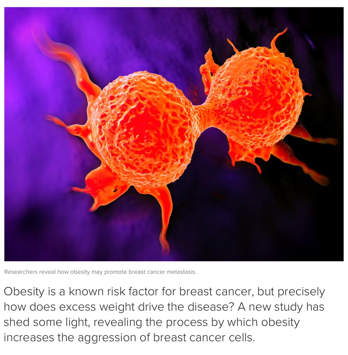 Did you know that after going through #menopause, #women who are obese are 20–40 percent more likely to develop breast #Cancer than women of a healthy weight. A new study shows how excess weight and  #obesity drives #breastcancer   https://www. medicalnewstoday.com/articles/31983 8.php &nbsp; … <br>http://pic.twitter.com/I72XZkUrVM
