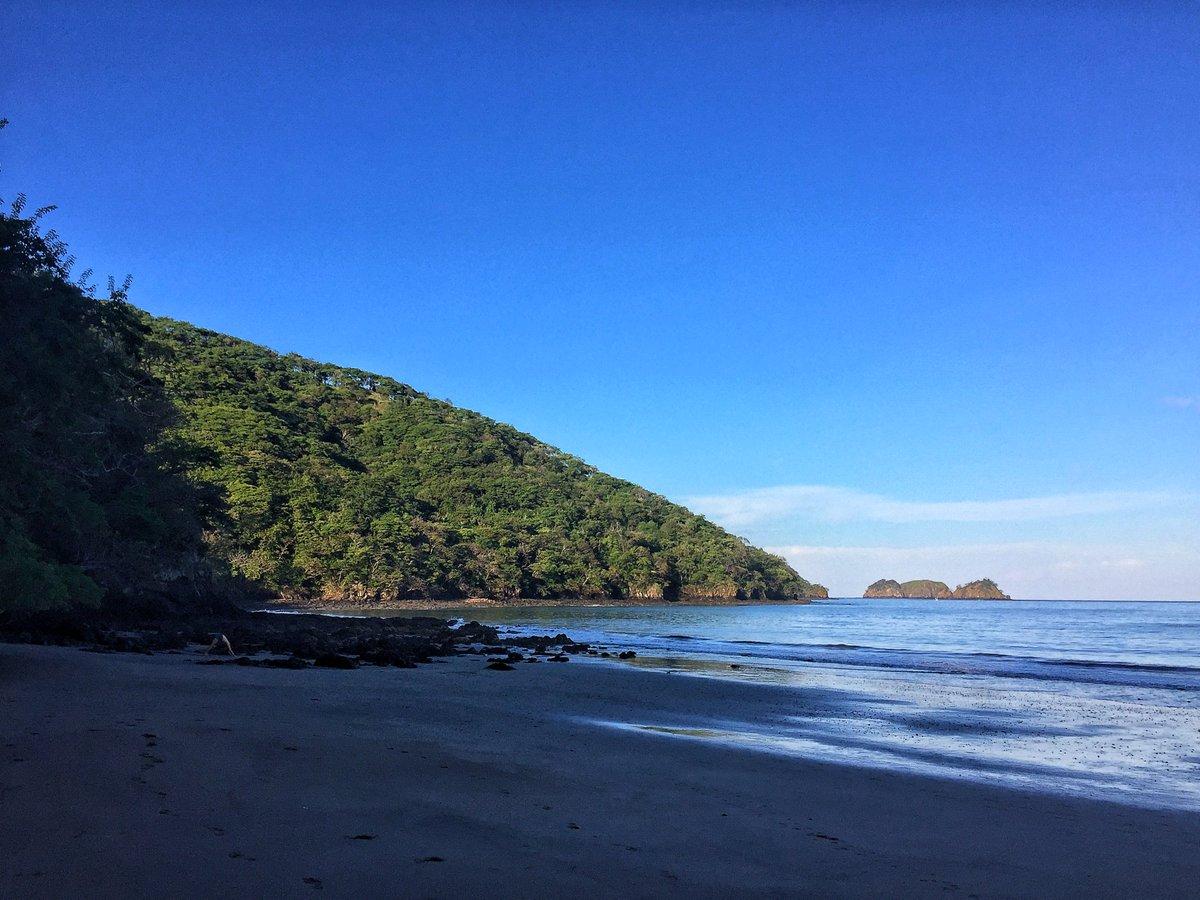 Saw someone doing #yoga on the #beach this AM while on my run. Might be something I should take up. Hmmm... @RealSaltLife @beachesbikes @beachlifemind @HeaIthTips @BeFitMotlvat @BestProFitn<br>http://pic.twitter.com/rLx32mCrtj