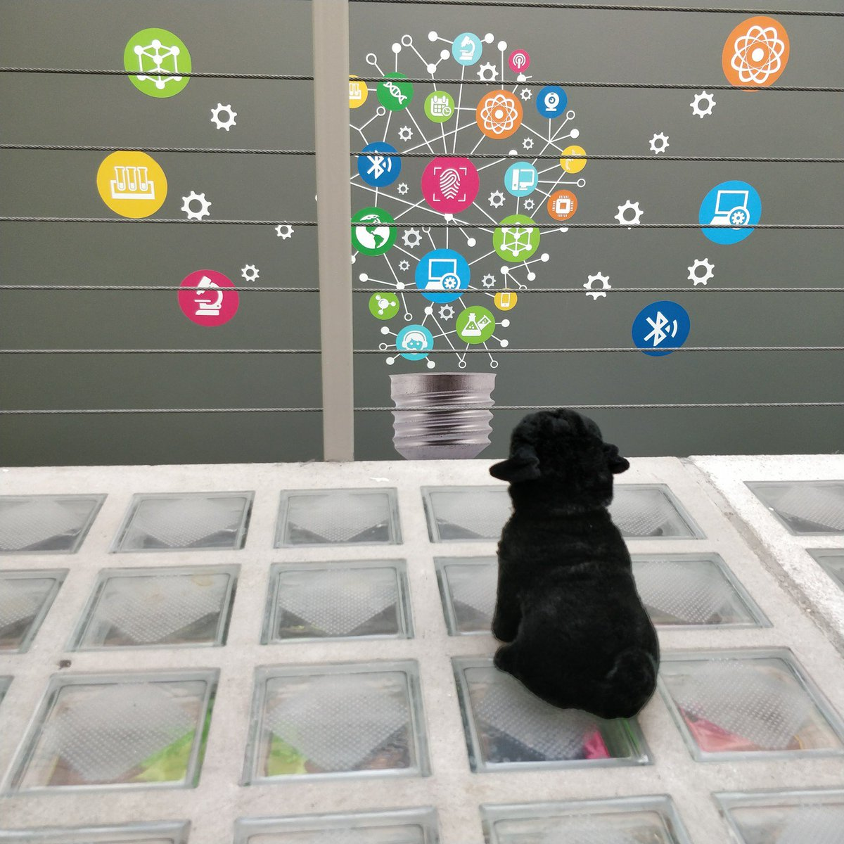 While everybody is ready to enjoy their weekend... Black Puggers are wondering and thinking about great projects and ideas ongoing at @BlackPugStudio - #wondering #ideas #creative #Web #tech #weekend #pug #design #designthinking #ux #uxdesign<br>http://pic.twitter.com/O2t5YyW93T